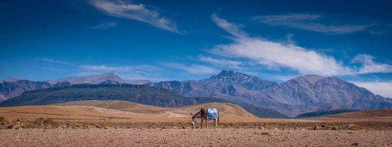 Marocco, The world of color